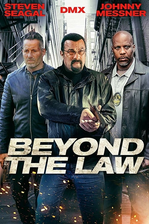 Beyond The Law 2019-123movies